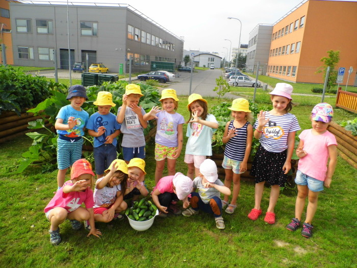 zeleninová zahrada_2